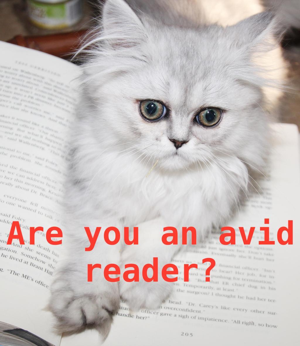 persian kitten book-2